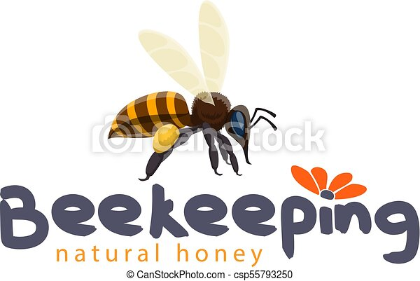 Line Art Bee : Drawing cute bee with blue bulletin board clipart