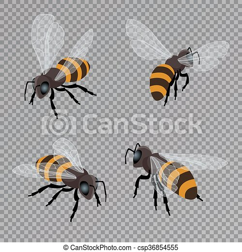 Honey Bee Vector Set On A Transparent Background Flat 3d Isometric Illustration