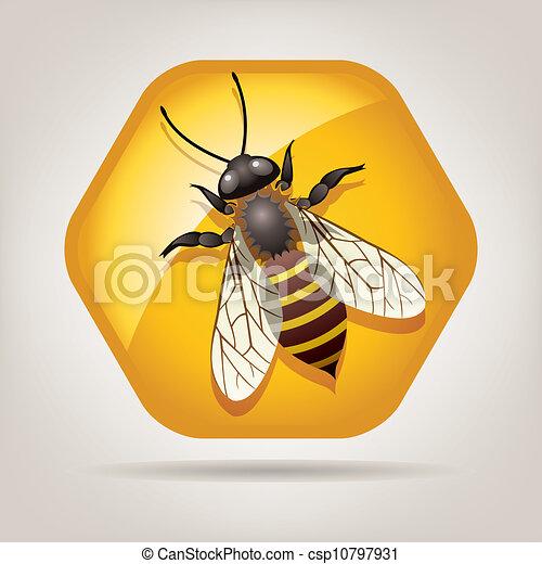 honeycell, wektor, pracujący, pszczoła - csp10797931