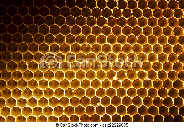 Honeycomb background stock photos search photographs and clip art honeycomb background csp22329035 voltagebd Image collections