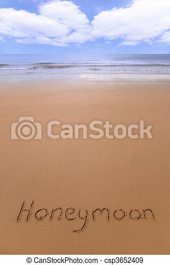Honeymoon on the beach. - csp3652409