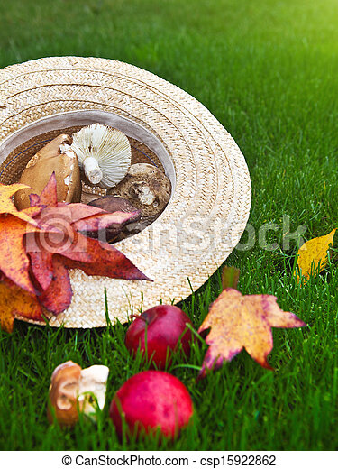 Antecedentes con hojas de arce, hongos y manzanas - csp15922862