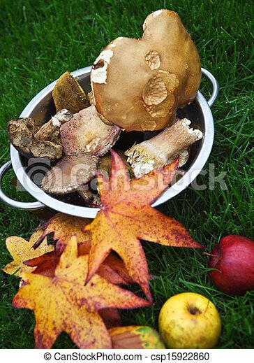 Hojas de arce de otoño, hongos y manzanas - csp15922860