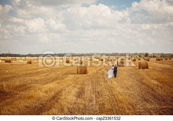 hooi, bruidegom, sluier, bruid - csp23361532