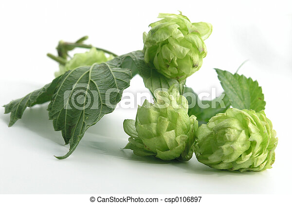 hop - csp0106897