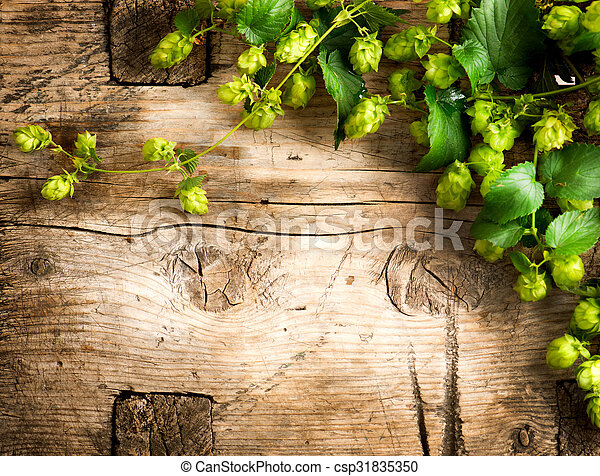 Hop twig over old wooden table background. Vintage style. Beer production. Brewery - csp31835350