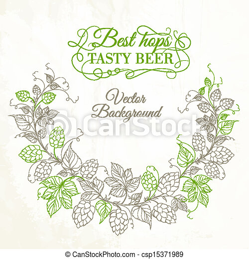 Hops with leafs isolated on white - csp15371989