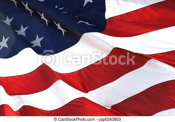 horizontal, drapeau, américain, vue - csp0243803