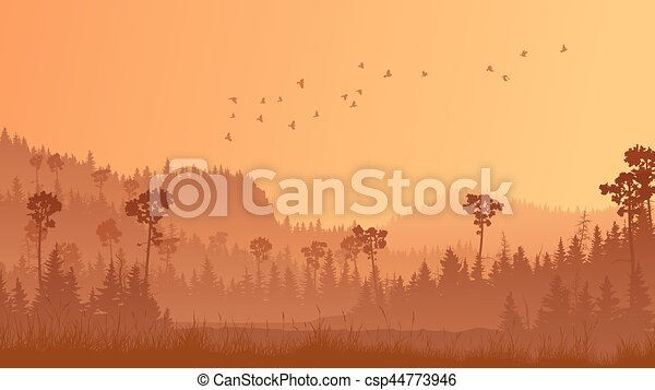 Horizontal illustration of forest with grass at sunset. - csp44773946