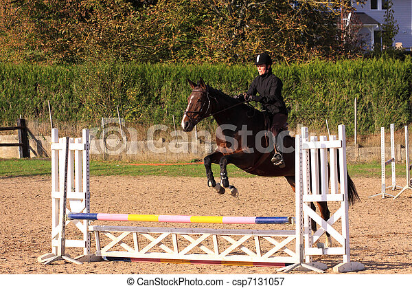 horse and rider has a jumping contest - csp7131057