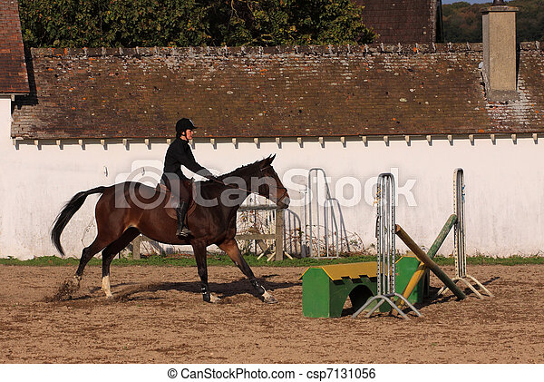 horse and rider has a jumping contest - csp7131056