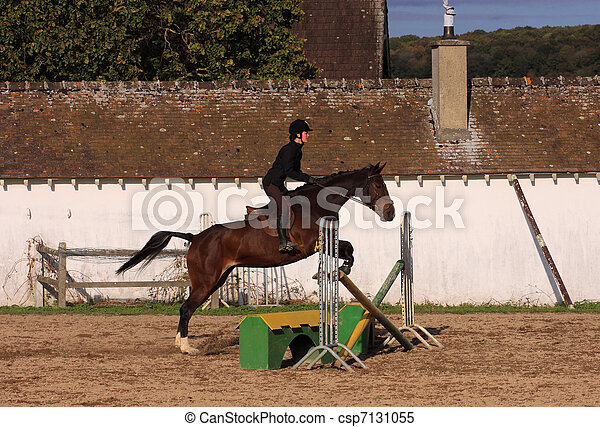 horse and rider has a jumping contest - csp7131055