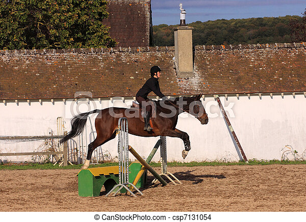 horse and rider has a jumping contest - csp7131054