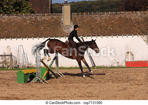 horse and rider has a jumping contest - csp7131060