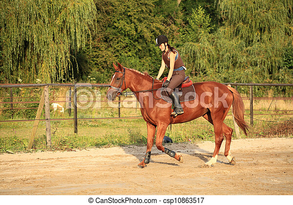 horse and rider - csp10863517