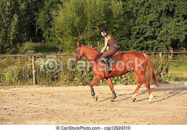 horse and rider - csp12924310