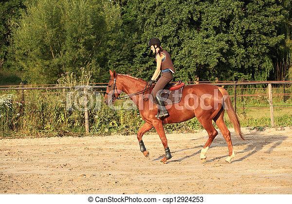 horse and rider - csp12924253