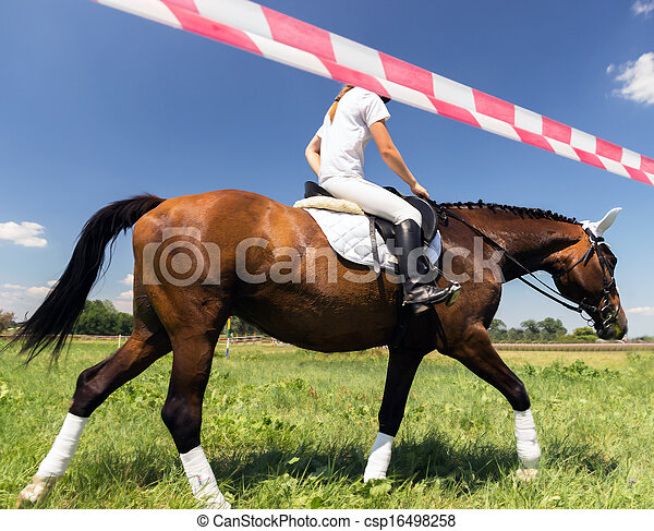 horse and rider - csp16498258