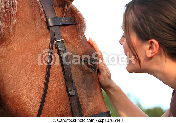 horse and rider - csp10785440