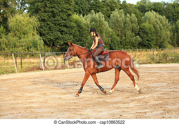 horse and rider - csp10863522