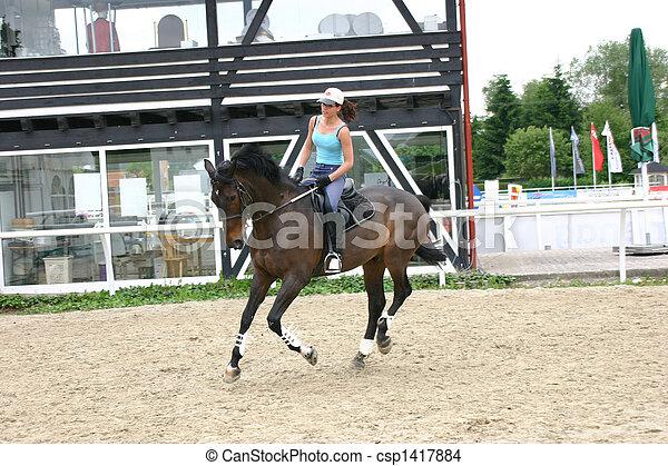 Horse and rider - csp1417884
