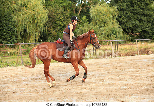 horse and rider - csp10785438