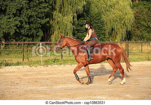 horse and rider - csp10863531