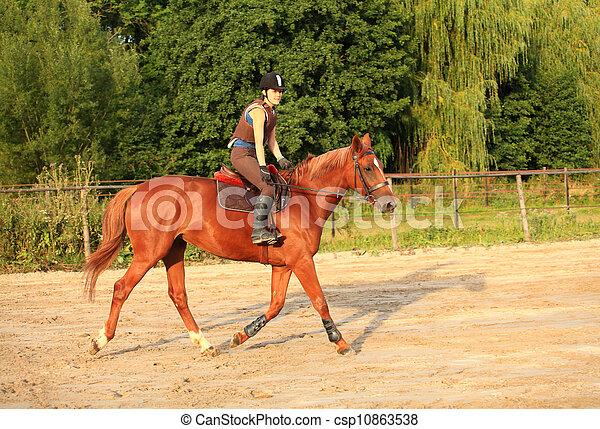 horse and rider - csp10863538