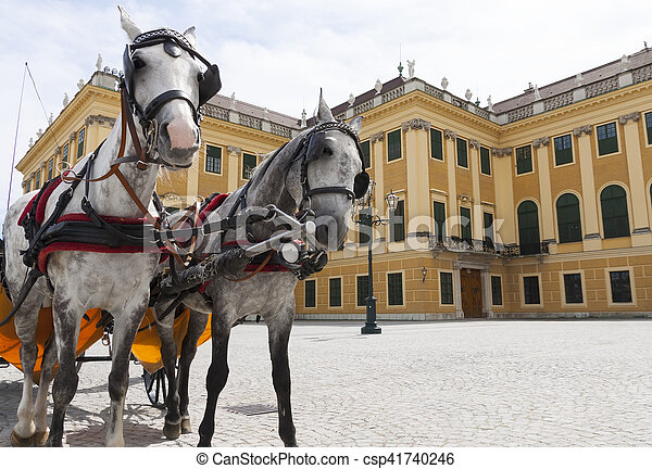 horse carriage near Schonbrunn  palace - csp41740246