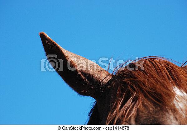 horse ear - csp1414878