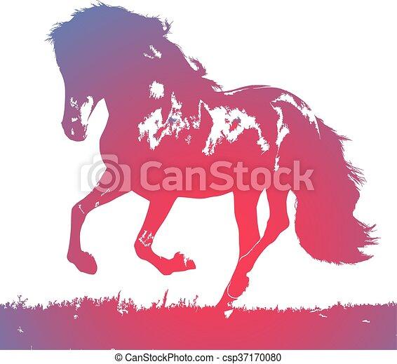horse - csp37170080