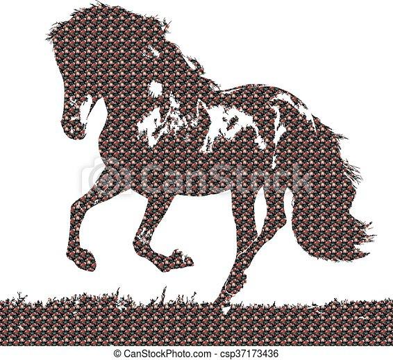 horse - csp37173436