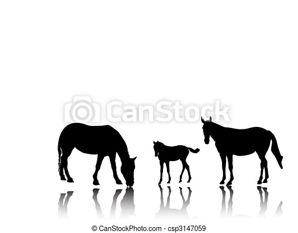 horse family - csp3147059