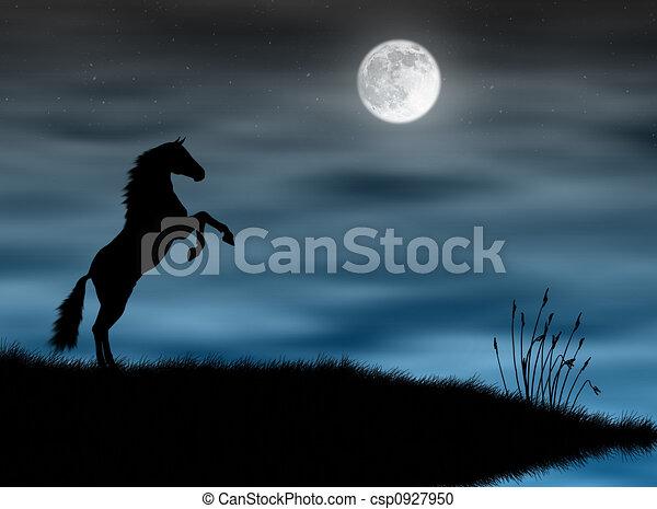 Horse in the moonlight - csp0927950