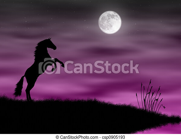 Horse in the moonlight - csp0905193