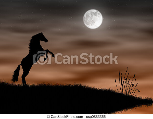 Horse in the moonlight - csp0883366