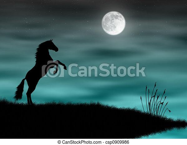 Horse in the moonlight - csp0909986