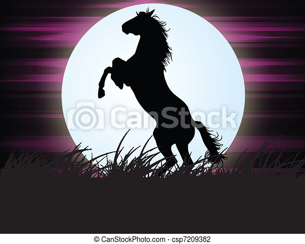 Horse in the night  - csp7209382