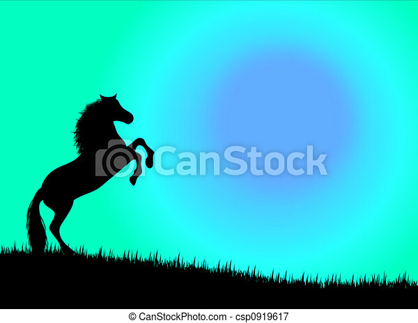 Horse in the sunset - csp0919617