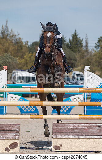 horse jumping competition - csp42074045