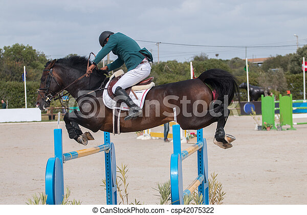 horse jumping competition - csp42075322