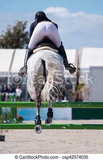 horse jumping competition - csp42074035