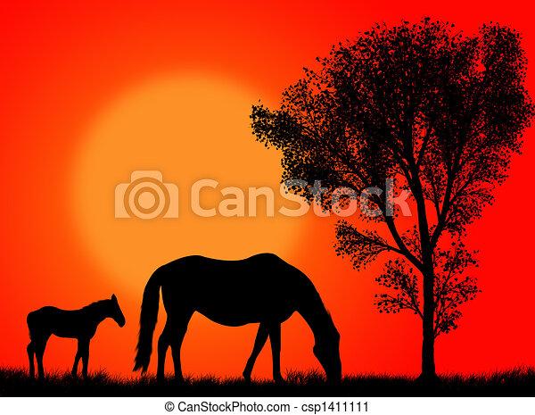 Horse pasture - csp1411111