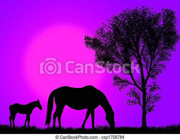 Horse pasture - csp1758784