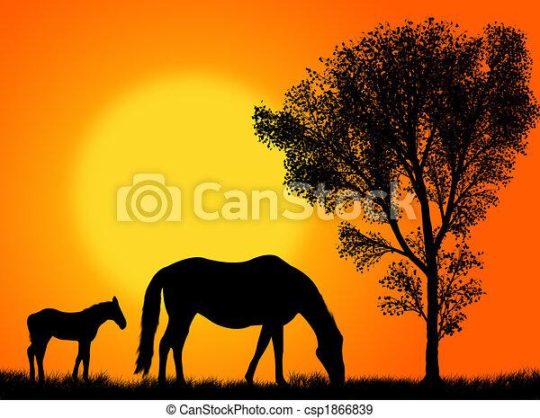 Horse pasture - csp1866839