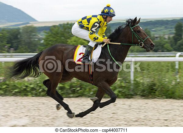 Horse racing - csp44007711