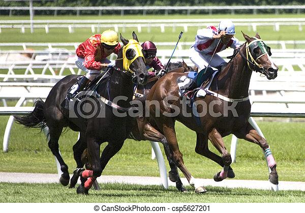 Horse Racing - csp5627201