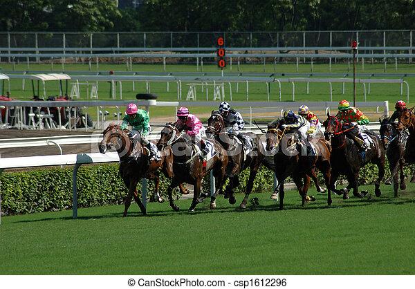 Horse racing - csp1612296