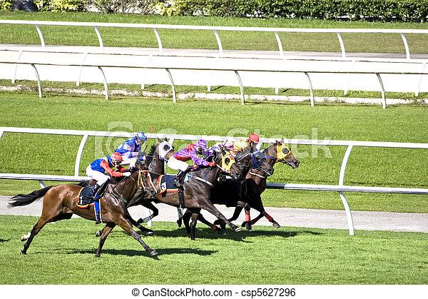 Horse Racing - csp5627296