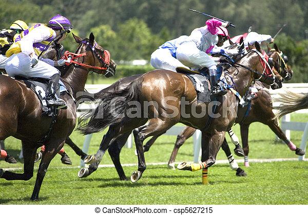 Horse Racing - csp5627215